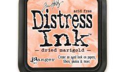 Ranger ink pad Dried marigold